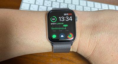 Apple Watch Series 4ステンレススチールケースとミラネーゼループ
