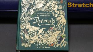 うつくしすぎる世界の動物 (日本語)